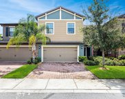 17337 Old Tobacco Rd, Lutz image