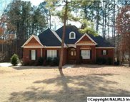 2521 Lookout Mountain Drive, Scottsboro image