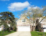 2517 Windsor Lane, Northbrook image