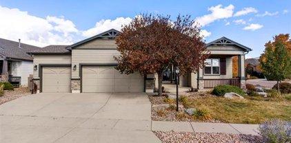 9503 Newport Plum Court, Colorado Springs