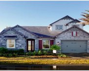 11885 Frost Aster Drive, Riverview image