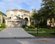 20420 Carolina Cherry Court, Tampa image