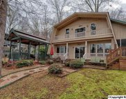 388 Fisher Hollow Road, Guntersville image