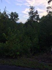 3899 Bear Track Way, Del Rio image