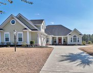 1262 Wood Stork Drive, Conway image