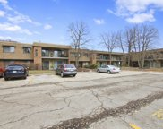 250 Old Oak Drive Unit 274, Buffalo Grove image