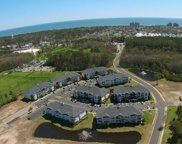 1000 Ray Costin Way Unit 102, Murrells Inlet image