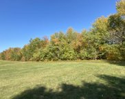 40 Acres 144th Street, Cass Lake image