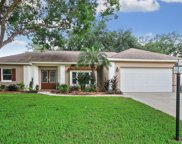 9201 Pebble Creek Drive, Tampa image