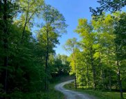 2669 County Road 316 (Tract 3), Cape Girardeau image