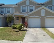 6227 Olivedale Drive, Riverview image