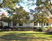 224 Conway Road, Fair Bluff image