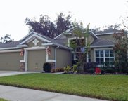 15719 Starling Water Drive, Lithia image