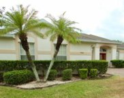 7904 Emperors Orchid Court, Kissimmee image