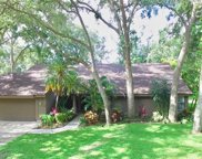 1733 Tall Pine Circle, Safety Harbor image