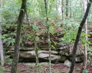 Old Sams Creek Rd-Lot 568, Pegram image