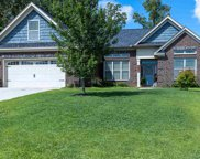 68 Bunchberry Court, Chapin image