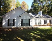 337 Widewater Dr, Newnan image