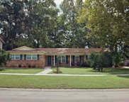 2676 SHENANDOAH DR South, Orange Park image