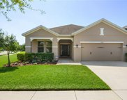 15713 Courtside View Drive, Lithia image