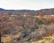 Sassafras, Squaw Valley image