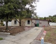 6536 S West Shore Circle, Tampa image