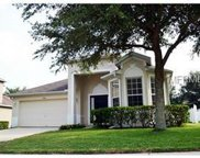 1442 Madison Ivy Circle, Apopka image