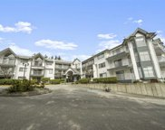 11601 227 Street Unit 211, Maple Ridge image