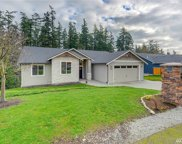 1135 Swiss Alps Loop, Camano Island image