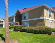 9481 Highland Oak Drive Unit 806, Tampa image