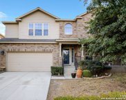 10911 Winecup Field, Helotes image