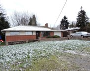 17315 47th Ave S, SeaTac image
