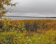 TBD N Blackduck Lake Road NE, Hines image