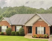 815 Mountain View Drive, Oneonta image