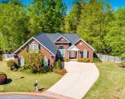 310 Saint Croix Court, Greer image