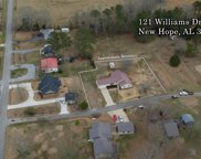 121 Williams Drive, New Hope image