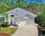 612 RACOON CT, St Johns image
