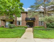 456 Raintree Court Unit 2A, Glen Ellyn image