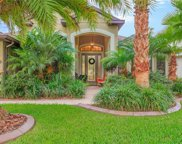 19350 Yellow Clover Drive, Tampa image