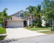 6813 Bluff Meadow Court, Wesley Chapel image