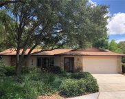 3048 Glenwood Court, Safety Harbor image