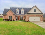 106 Solitaire Drive, Trinity image
