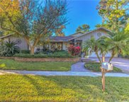 849 Park Court, Palm Harbor image