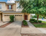 10424 Tulip Field Way, Riverview image