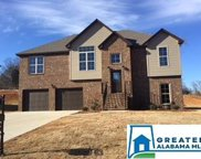 5031 Meadow Lake Crest, Mccalla image