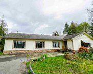 12342 244 Street, Maple Ridge image