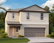 13325 Willow Bluestar Loop, Riverview image