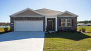 260 Forestbrook Cove Circle, Myrtle Beach image
