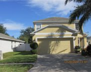 7732 Carriage Pointe Drive, Gibsonton image