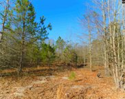Forest Drive, Leesville image
